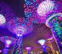 Singapore & Indonesia Elite Tours 2019 - 2020 -  Gardens by the Bay