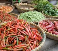 Sri Lanka Signature Tours 2019 - 2020 -  Market Fresh Produce