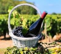 Paris and the Wines of Bordeaux & Burgundy Tours 2019 - 2020 -  Medoc Wine Region