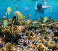 Colombia Signature Tours 2019 - 2020 -  Snorkeling