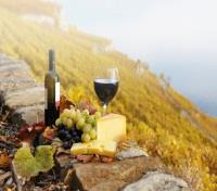 Indulgent Italy Tours 2019 - 2020 -  Cheese and Wine