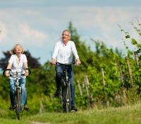 Cape, Kruger and Beach Honeymoon Tours 2019 - 2020 -  Biking through Vineyards