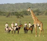 Kenya Exclusive Tours 2019 - 2020 -  Horseback Safari