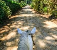 Guatemala Family Getaway Tours 2017 - 2018 -  Horseback Riding
