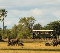 Zimbabwe Explorer  Tours 2019 - 2020 -  Elephant Express Train Safari