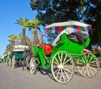 Signature Morocco with Relais & Châteaux Tours 2017 - 2018 -  Horse Drawn Carriage