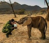Kenya's Northern Frontier Tours 2019 - 2020 -  Elephant Feeding at Reteti Elephant Sanctuary