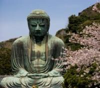 Japan: City Lights & Sacred Sites Tours 2019 - 2020 -  Buddha Statue