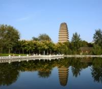 Imperial Cities of China & Japan Tours 2017 - 2018 -  Wild Goose Pagoda