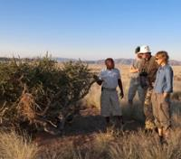 Namibia Dunes & Damaraland Tours 2019 - 2020 -  Nature Walk