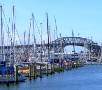 New Zealand In-Depth  Tours 2020 - 2021 -  Westhaven Marina