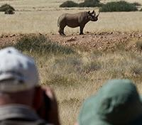 Namibia Exclusive Tours 2017 - 2018 -  Rhino Tracking