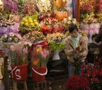 National Geographic Award Winning Vietnam For the Family Tours 2017 - 2018 -  Flower Market