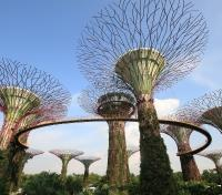 Luxury Southeast Asia Tours 2019 - 2020 -  Gardens by the Bay
