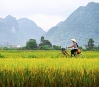 Northern Mountains & Southern Islands Tours 2019 - 2020 -  Bicycling in Vietnam