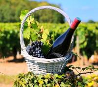 France Grand Tour Tours 2017 - 2018 -  Wine Tasting