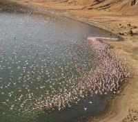 Kenya's Northern Frontier Tours 2019 - 2020 -  Central Island's Flamingo Crater Lake