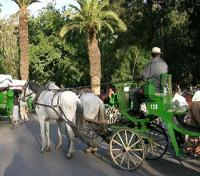 Signature Morocco with Relais & Châteaux Tours 2018 - 2019 -  Horse Drawn Carriage