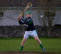 Celtic Roots of Ireland Tours 2019 - 2020 -  Hurling