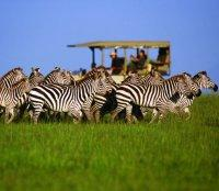 Tanzania Exclusive Tours 2019 - 2020 -  Singita
