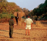Africa By Foot Tours 2017 - 2018 -  Walking Safari