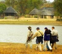 Sabi Sands Tours 2017 - 2018 - Guided Walks