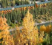 Denali National Park and Preserve Tours 2017 - 2018 -  Denali Grizzly Bear Resort