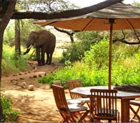 Kenya Active Adventure Tours 2019 - 2020 -  Dining with Elephants