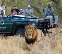 Kapama Private Game Reserve Tours 2017 - 2018 - Game Drives