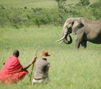 Kenya's Northern Frontier Tours 2019 - 2020 -  Guide Game Viewing