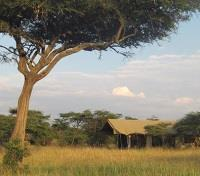 Kenya's Northern Frontier Tours 2019 - 2020 -  Naboisho Camp
