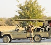 Etosha Tours 2017 - 2018 - Game Drives