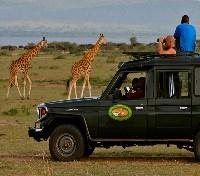 Murchison Falls Tours 2017 - 2018 - Game Drive