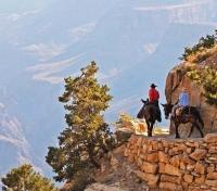 Grand Canyon National Park Tours 2017 - 2018 -  Phantom Ranch Mule Rides