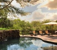 Thornybush Private Game Reserve Tours 2017 - 2018 - Pool