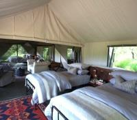 Moremi Game Reserve Tours 2017 - 2018 - Luxury Family Tent