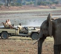 South Luangwa National Park Tours 2017 - 2018 - Game Drives