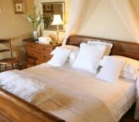 Oudtshoorn Tours 2017 - 2018 - Honeymoon Suite