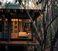 Phinda Game Reserve Tours 2017 - 2018 -  Phinda Forest Lodge