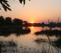 Okavango Tours 2017 - 2018 -  Pom Pom Camp at Night