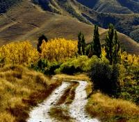 Queenstown Tours 2017 - 2018 - Surrounding Areas