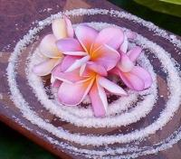 Palm Cove Tours 2017 - 2018 - The White Lotus Spa
