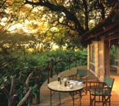 Tanzania Exclusive Tours 2019 - 2020 -  Tree Lodge Patio