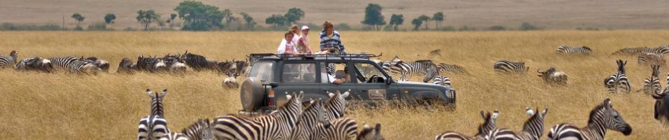 Kenya & Tanzania Game Tracker Tours 2017 - 2018 -  Safari