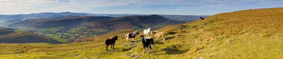 Wales Highlights Tours 2019 - 2020 -  Brecon Beacons