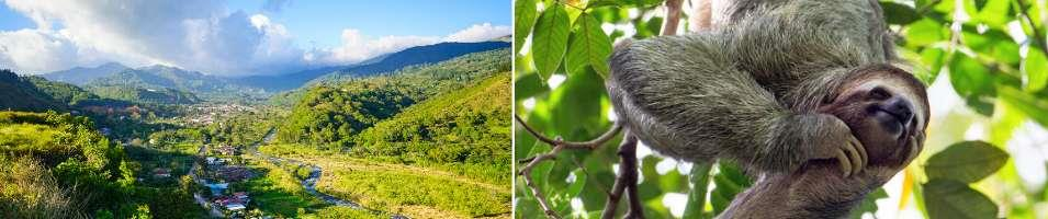 Cloudforest and Caribbean Islands Tours 2020 - 2021 -  Cloudforest and Caribbean Islands