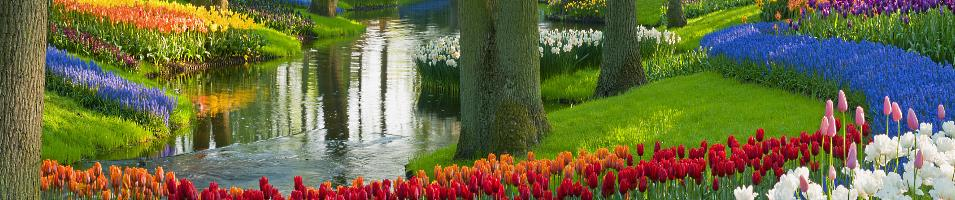 Tulip Time Cruise Tours 2017 - 2018 -  Tulip Time