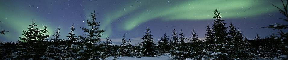 In Search of the Northern Lights Tours 2017 - 2018 -  Northern Lights Norway