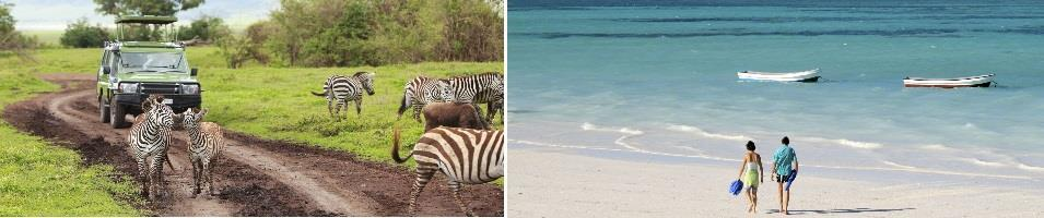 Tanzania Signature Safari and Beach Tours 2018 - 2019 -  Beach and Safari