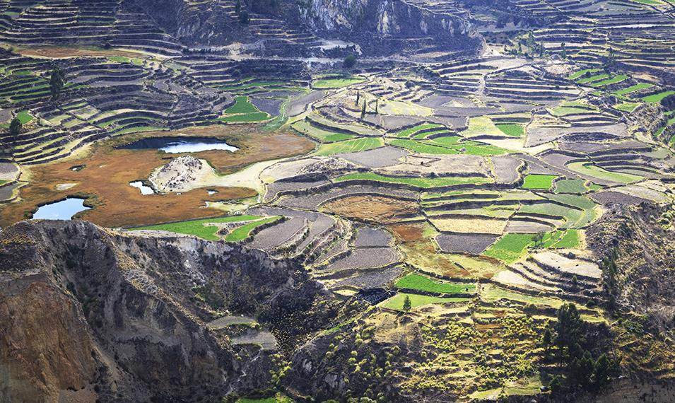 Visit the deepest canyon in the world - Colca Canyon.